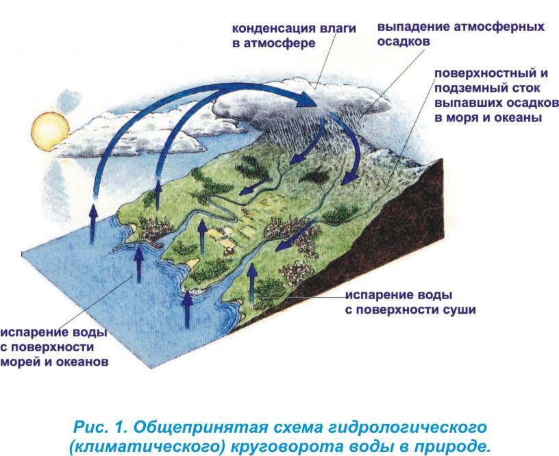 типе круговорота воды